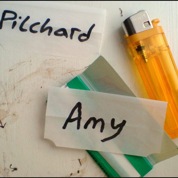Pilchard Amy album art